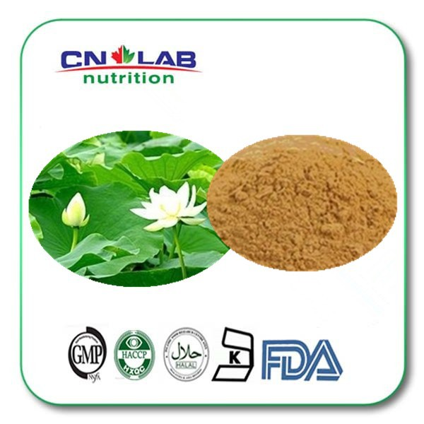 100% Natural flavonoids plant extract lotus leaf extract 500g for loss weight стоимость