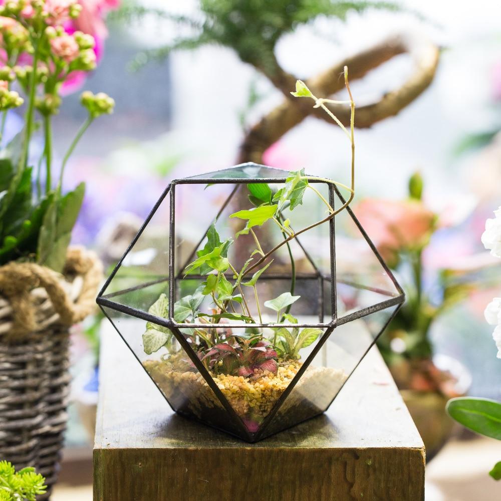 Modern Tabletop Cuboctahedron Geometric Glass Terrarium Succulent Planter <font><b>Plant</b></font> Terrarium Box Gardening Decorative Flower Pot