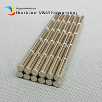 NdFeB Micro Magnet Rod Dia 3 X 10mm Precision Magnet Neodymium Magnets Sensor Rare Earth Tinny
