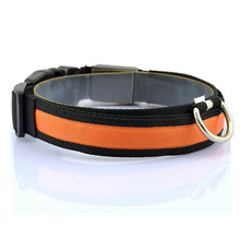 Juno LED Dog Collar