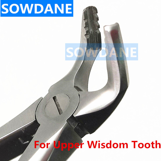 Higher Stainless steel Dental Adult Teeth Extraction Forcep for Upper Wisdom Tooth Surgical Orthodontic Instrument Tool