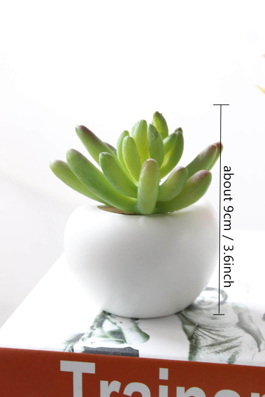 Bonsoplant Fridge Magnets Potted Artificial Green succulent Bonsai plants HTB1DSkZvA9WBuNjSspeq6yz5VXaA fridge magnets