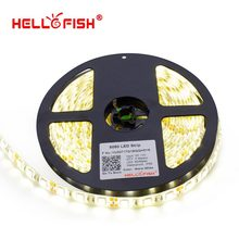 Hello Fish 5m 5050 300 SMD IP65 Waterproof LED strip,12V flexible 60led/m LED tape, white/warm white/blue/green/red/yellow/RGB
