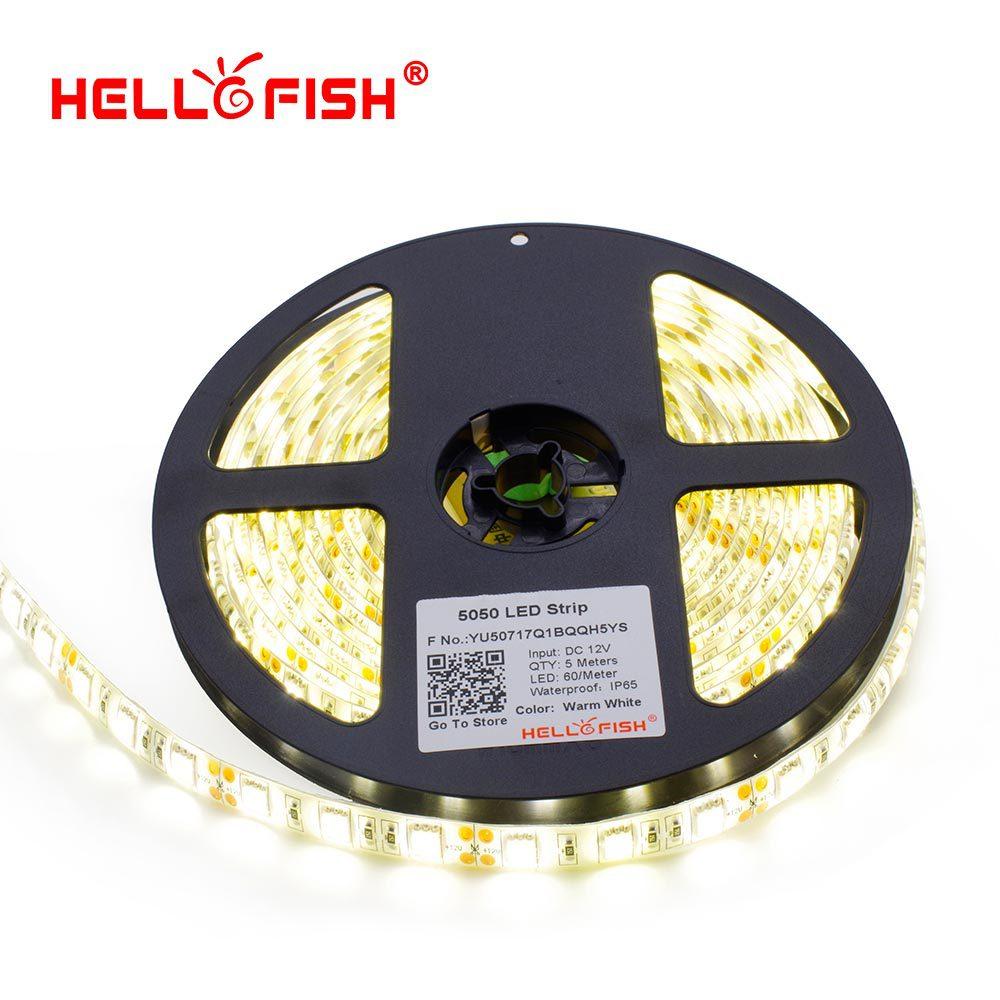 Hello Fish IP65 Waterproof LED strip LED flexible light LED tape 5M 300 led chips DC12V white/warm white/blue/red/yellow/RGB