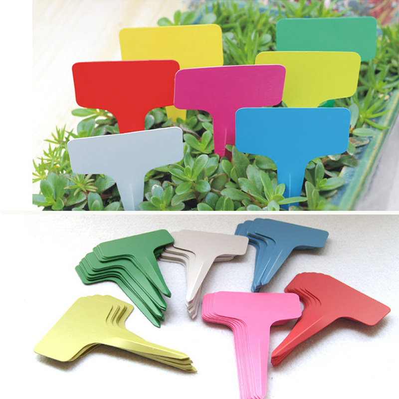 5pcs New Thicken Plastic Plant Labels Mark T-type Plant Flower Tag Garden Ornaments Reusable Gardening Label Nursery Flower Tag(China)