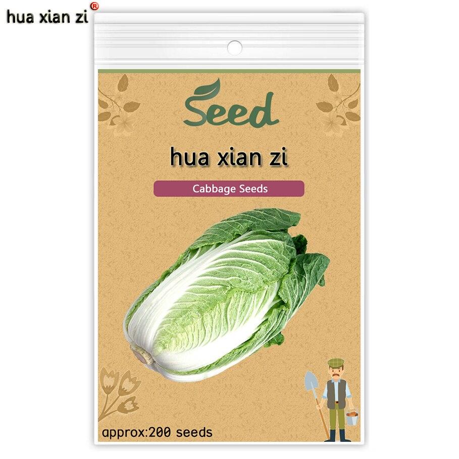 Вкусно Капуста Семена легко Выращивать Питательные Зеленый Растительное Семя Brassica Pekinensis Садовых Растений 200 семена/мешок