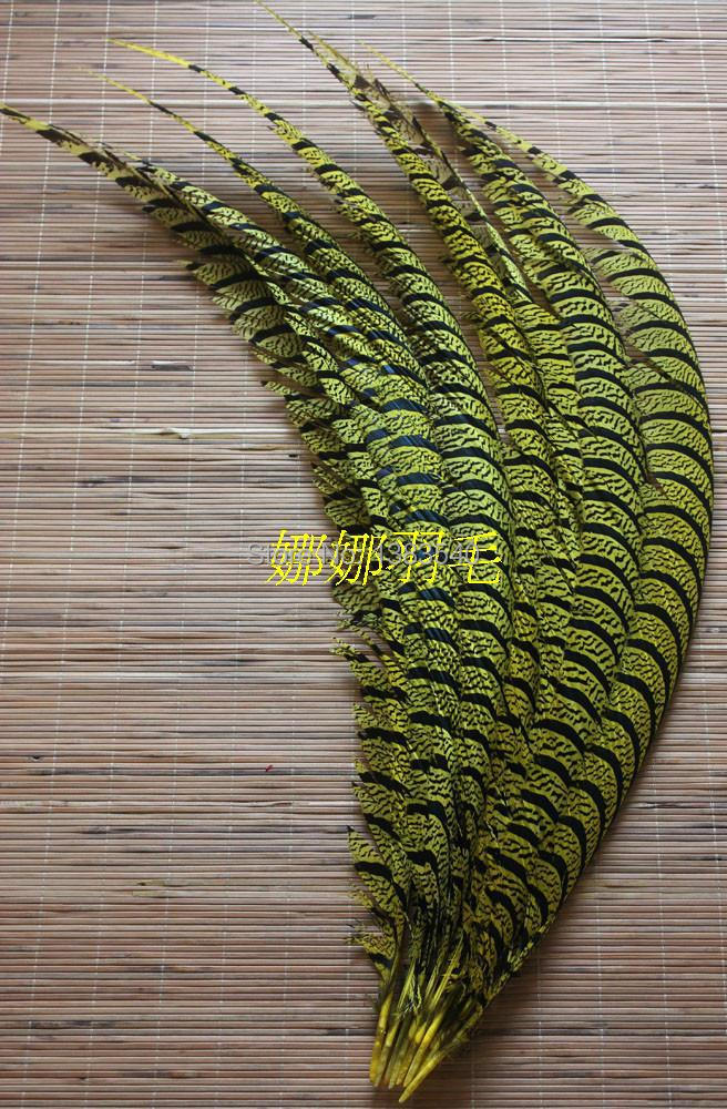 10 PCS natural copper chicken tail cover yellow 80-90cm / 32-36 inches10 PCS natural copper chicken tail cover yellow 80-90cm / 32-36 inches
