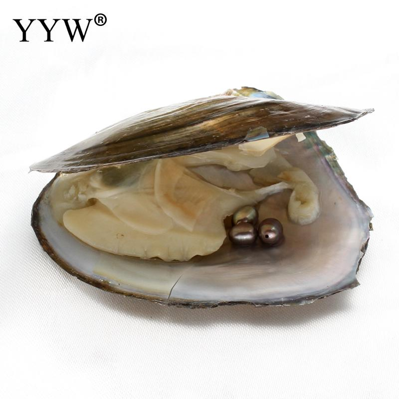 Freshwater Vacuum-pack Oyster Wish Pearl Mussel Shell with Pearl Inside have hole rice shape Mysterious Surprise Gift 6-7mm