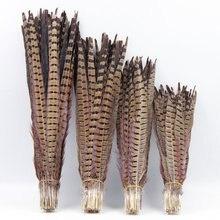 5pcs/lot 30-65cm/optional Pheasant Feathers Goose Feather family decorates mask decor hair extention Wedding decoration