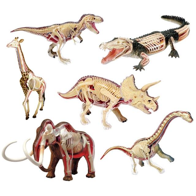 Animal Vision Anatomy Dinosaur Giraffe Wrist dragon Tiger Elephant Shark Model 4D Educational Puzzle Medical Science Doll Toys
