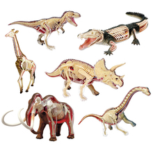 Животное Видение Анатомии Динозавров Жираф Наручные дракон Тигр Слон Акула Модель 4D Развивающие Головоломки Медицинская Наука Игрушки Куклы