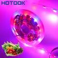 Светодиодная лампа для выращивания растений полный спектр Светодиодная лента 5 м 12 В 5050 красный синий 4:1 Светодиодная лента 16 4 фута Водонепр...
