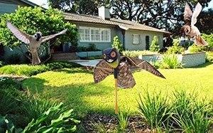 Image 3 - Натуральная поддельная сова, приманка, смочок, птица, вредители с движущимися крыльями, Реалистичная пугающая птица, крыса, мыши, грызуны