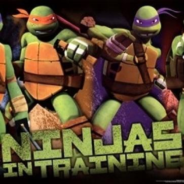 Teenage Mutant Ninja Turtles – Profile Laminated Poster Print (36 x 24)
