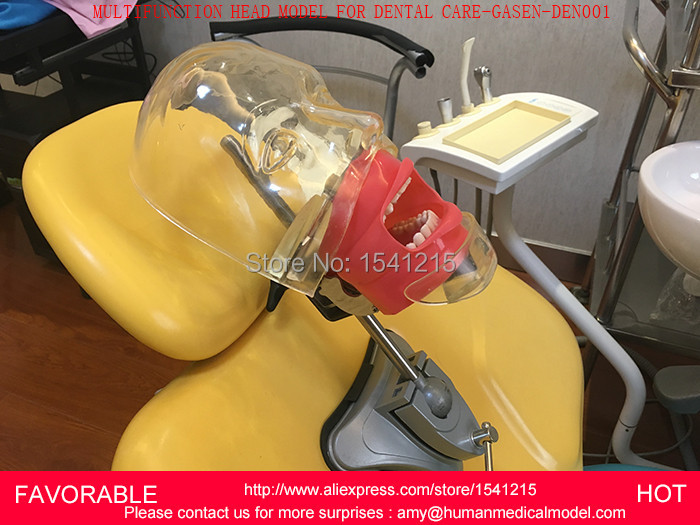 цена DENTAL DISEASE TOOTH TEACHING MODEL,DENTAL EQUIPMENT,MEDICAL ORAL CARE TOOL TEETH MODEL EQUIPMENT, DENTAL CARE-GASEN-DEN001