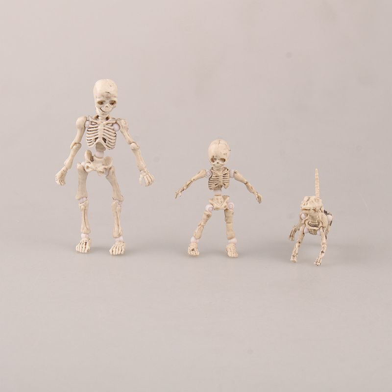 HUong Mr. Bones <font><b>Pose</b></font> <font><b>Skeleton</b></font> Model with Dog Table Desk Book PVC Figure kids Toys Collectible Gift image