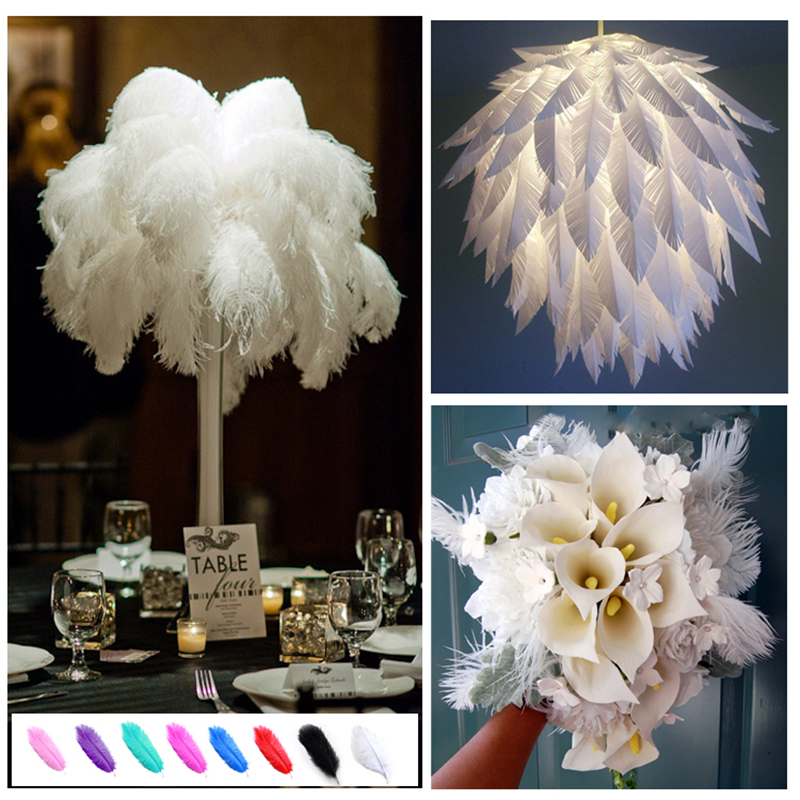 Haochu 12pcs Natural Ostrich Feathers Diy Wedding Flower Party