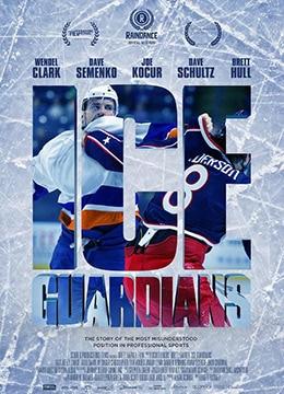 《冰上捍卫者》2016年加拿大,爱尔兰,美国纪录片,运动电影在线观看