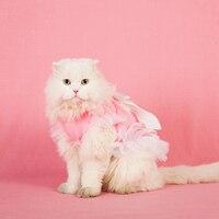 Pet Costume Vêtements Chats Porter Gilet Gatos Automne Animaux Mignon trucs Pour Chat Pet Kiyafet Cachorro Costume Pour Chats D'hiver DDM2546