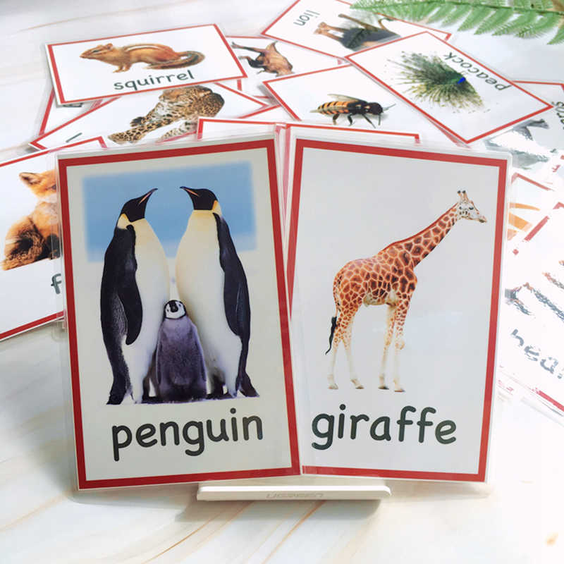 72PCS/set Wildlife/Sea Animals/Farm Animals Learning English Flash Card for Children Montessori Educational Toy Word Pocket Card