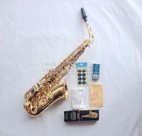 Salma Selmer E Flat Alto Saxophone SAX 802 Tube Color Shell Snaps