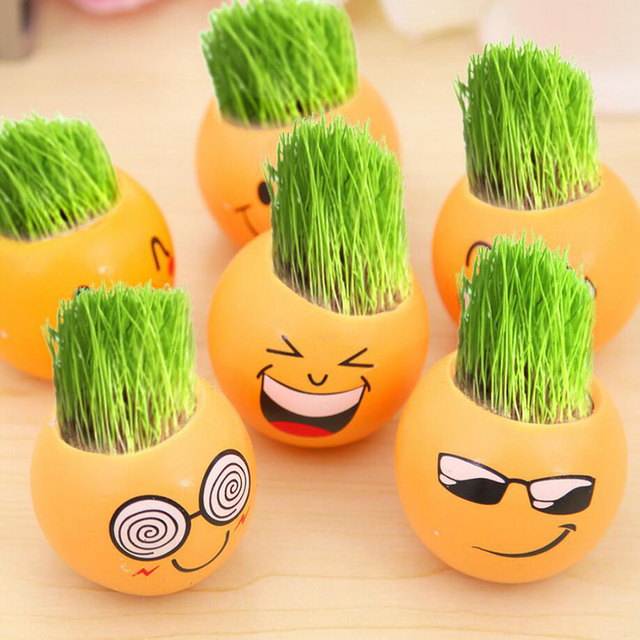Cute Face Expression Pots Plant Gr Cool Men Office Work Desk Home Decor Grow Pot Mini