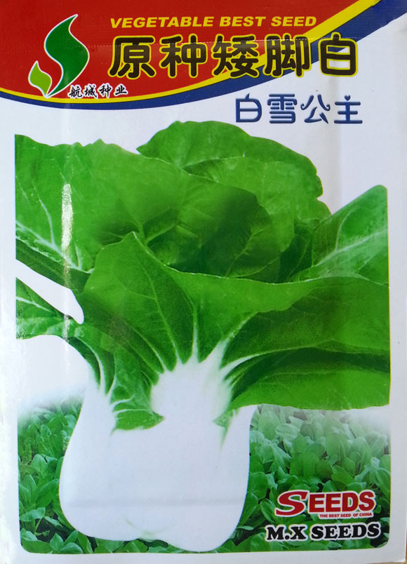 Free Shipping Garden Chinese cabbage Seeds Vegetables 10g bag Species cabbage stem short feet home garden