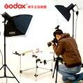 Godox 250 Вт вспышка фотостудия комплект для стрельбы фотографическое оборудование вспышка свет набор Adearstudio CD50