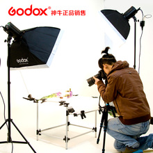 Godox 250w Flash Photography Studio Shooting Kit Photographic Equipment flash light set Adearstudio CD50