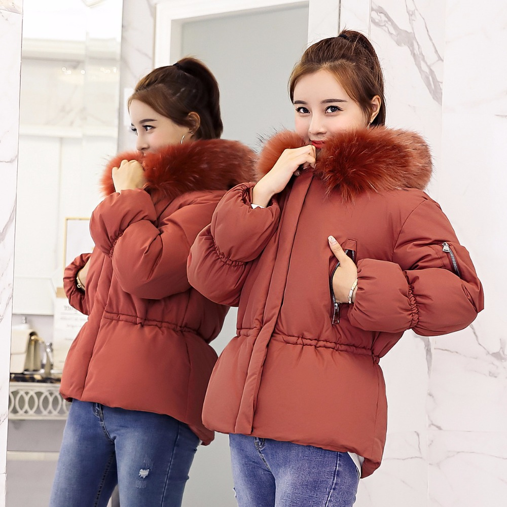 Short Hooded Fur Collar Winter   Down     Coat   Jacket Warm Women Casaco Feminino Abrigos Mujer Invierno 2018 Wadded Parkas Outwear 10
