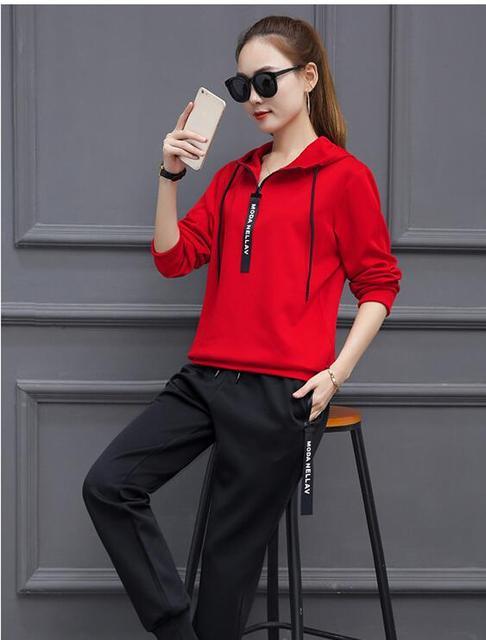 Artı Boyutu 4XL Rahat 2 Parça Set Kadın 2017 Ilkbahar Moda Kapşonlu Hoodies + Pantolon Sonbahar Eşofman Kadın Spor Takım Elbise