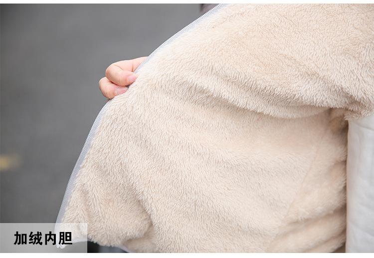 Autumn 19 New Parkas basic jackets Female Women Winter plus velvet lamb hooded Coats Cotton Winter Jacket Womens Outwear coat 31