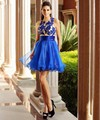 Blue Design Styles Elegant Robe De Cocktail Dress 2016 Sweet Party Gowns Short Dresses Vestido De Festa Curto Plus Size