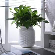 Modern Fashion Ceramic Flower Vase Nordic Minimalism Vases Home Decoration Plant Flowerpot for Wedding