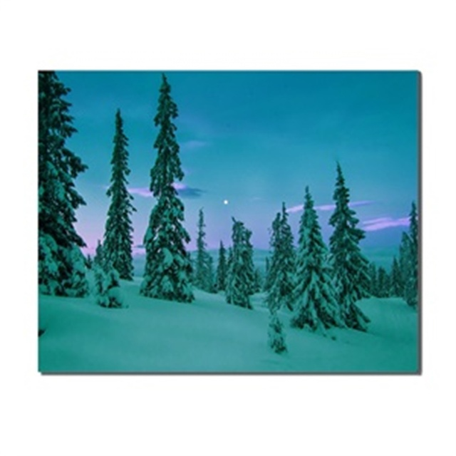 Night Landscape Snow Pines Moon Sky Home Decoration Canvas Painting Poster Artwork Picture Printed for Living Room Bathroom