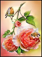 Embroidery Counted Cross Stitch Kits Needlework Crafts 14 ct DMC Color DIY art Color Handmade Decor Bird, Bee and Roses