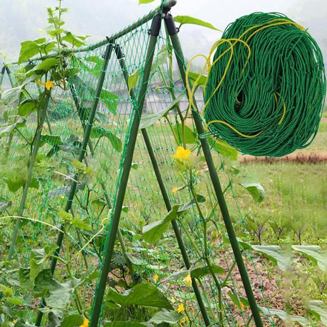 Giardino Verde di Nylon Piante di Ortaggi Traliccio Compensazione Supporto Reti