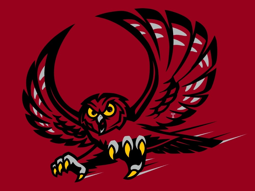 Temple Owls flag 90*150 CM Digital Printing 100D Polyester with sleeve two metal Brass NCAA flag university sports team