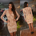 Sexy  Lace Long Sleeve Cocktail Dress See Through Back Champagne Short Party Dress Vestidos curtos para festa