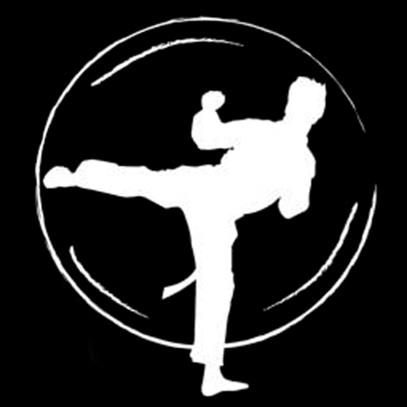14 3cm 15 9cm karate fight fashion vinyl car styling car sticker
