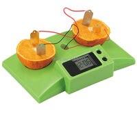 Modelli figli adolescenti bambini scienze della formazione scientifica sperimentale giocattolo materiali frutta electric power generation experime
