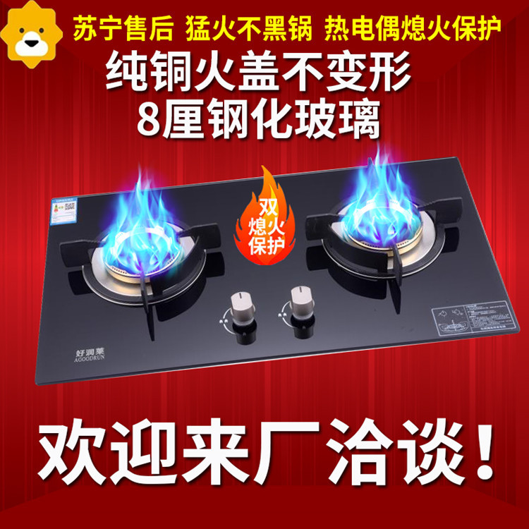 Bulit-in Gas Hobs  Intense Fire  Hotpot  Steam & Boil  Dual-cooker gas cooker liquefied gas stove Natural gas stove
