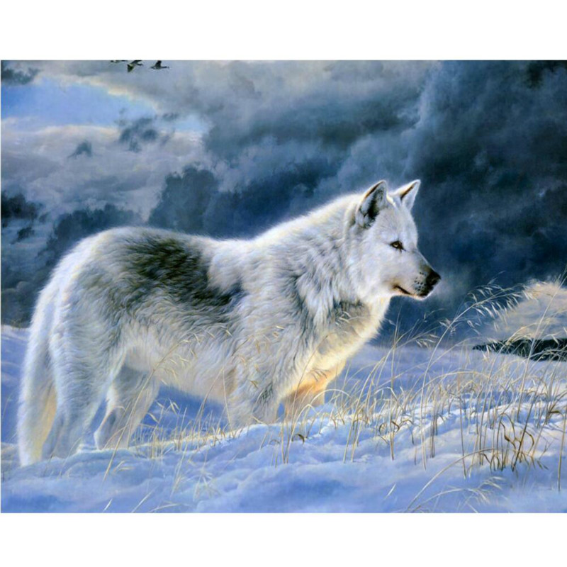 0329ZC0401 Home wall furniture Decorations DIY number painting children Graffiti lonely snow wolf painting by numbers 0329zc0401 home wall furniture decorations diy number painting children graffiti lonely snow wolf painting by numbers