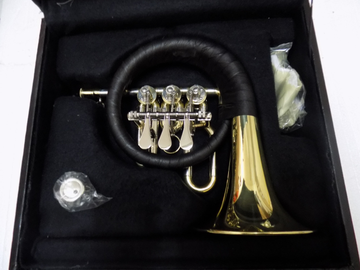 Bb Post Horn Rotary valves Brass Body With Wood case Musical instruments Factory Supply Shipping time 10-15 days