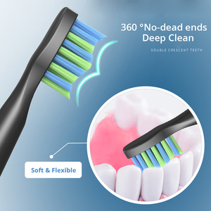 Image 3 - Seago SG 551 Sonic แปรงสีฟันไฟฟ้าผู้ใหญ่สมาร์ทจับเวลา 4 โหมดลึกทำความสะอาดช่องปาก USB แปรงสีฟันชาร์จด้วยหัวแปรง 3 หัว