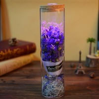 Decorative Lighted Prince Glass Cover Fresh LED Light Wedding Decoration Dried Flowers For Valentine S Day