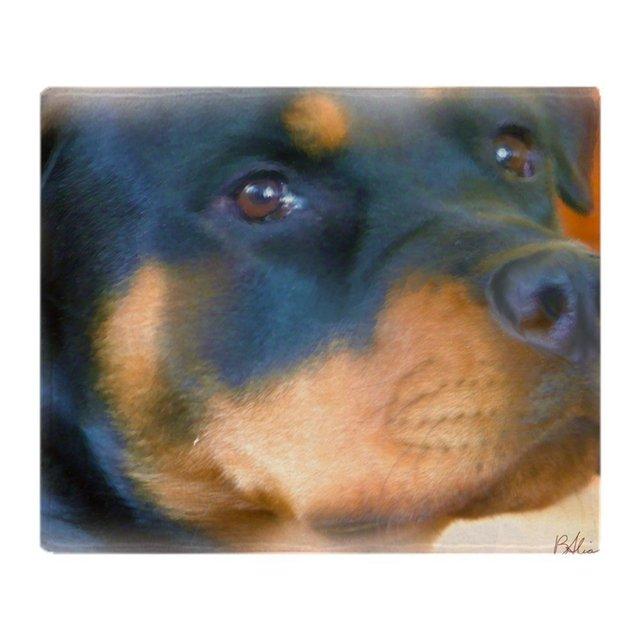 Rottweiler Best Friend Soft Fleece Throw Blanket Warm Coral Fleece Stunning Best Soft Throw Blanket
