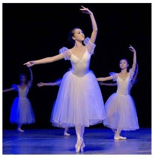 New TUTU ballet dress adult ballet stage performances white swan fairy ballet costumes