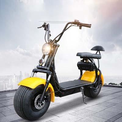 Citycoco Scooter électrique moto vélo vélo 2Ah Lithium batterie Double frein personnalisable F