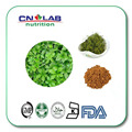 200g Hot Leading Natural Gynostemma P.E. from GMP Manufacturer 80% Gypenoside